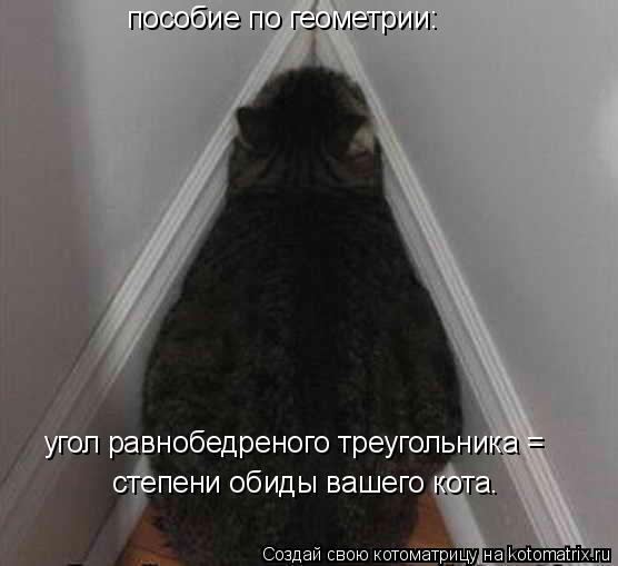 Котоматрица: пособие по геометрии: угол равнобедреного треугольника = степени обиды вашего кота.