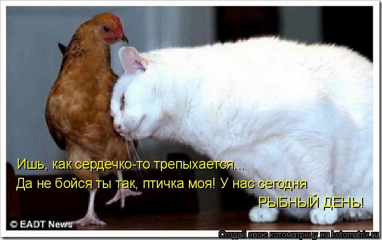 Котоматрица - Ишь, как сердечко-то трепыхается...  Да не бойся ты так, птичка моя! У