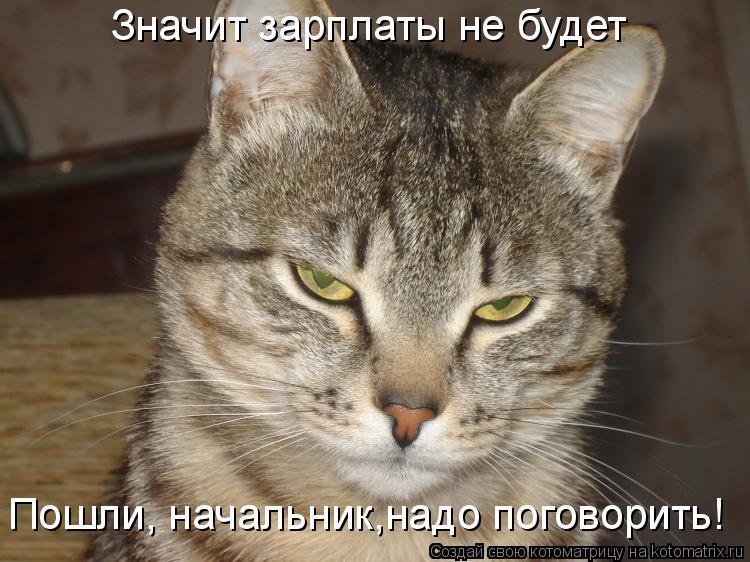 Котоматрица: Значит зарплаты не будет Пошли, начальник,надо поговорить!