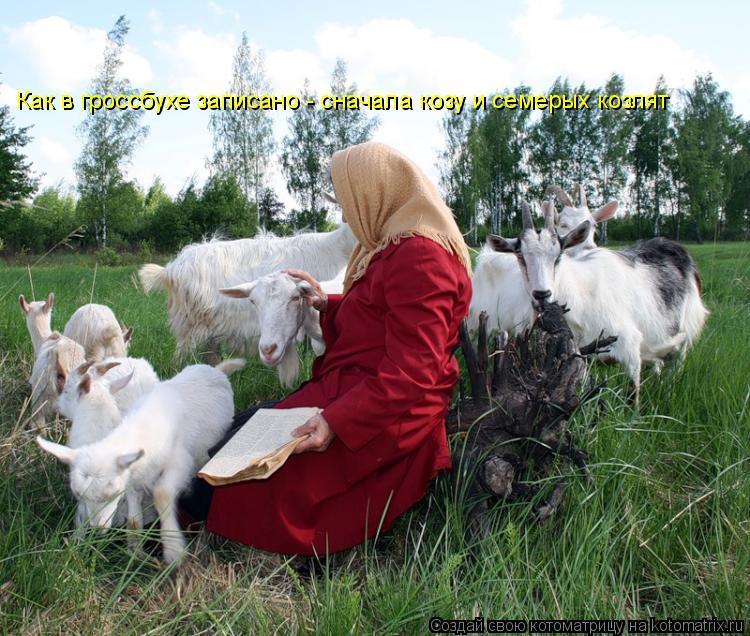 Котоматрица: Как в гроссбухе записано - сначала козу и семерых козлят