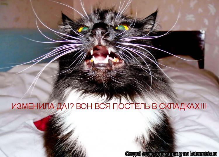 Котоматрица: ИЗМЕНИЛА ДА!? ВОН ВСЯ ПОСТЕЛЬ В СКЛАДКАХ!!!