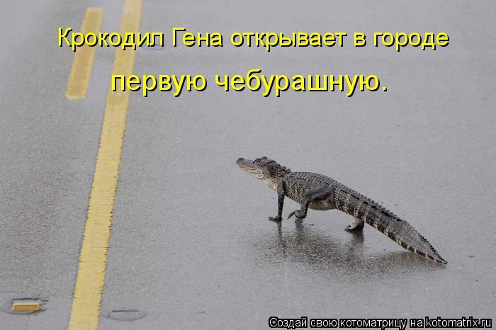 Котоматрица: Крокодил Гена открывает в городе первую чебурашную.