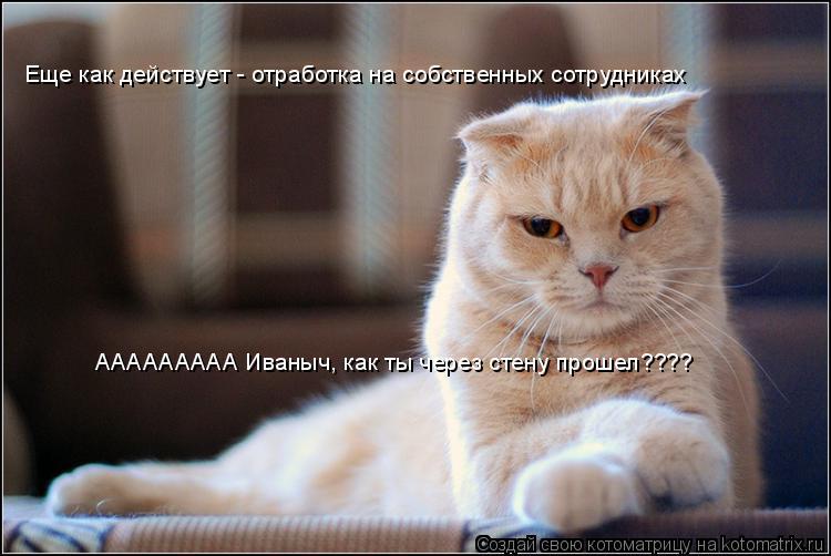 Котоматрица: Еще как действует - отработка на собственных сотрудниках ААААААААА Иваныч, как ты через стену прошел????