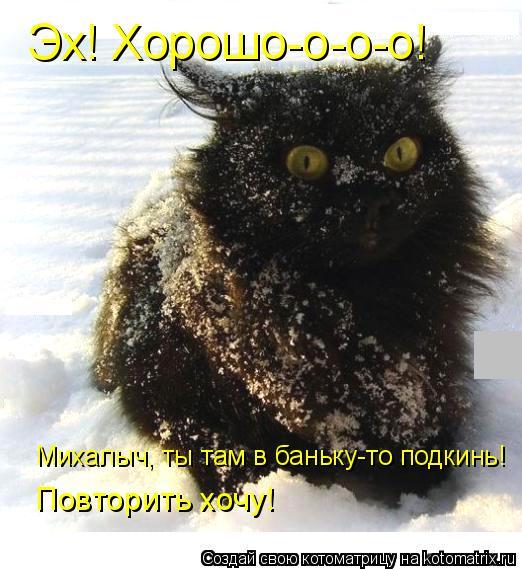 Котоматрица: Эх! Хорошо-о-о-о! Михалыч, ты там в баньку-то подкинь! Повторить хочу!