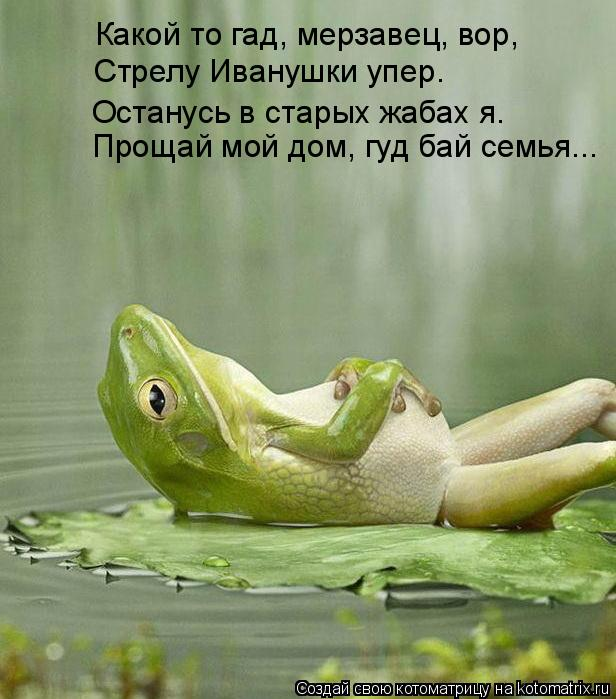 Котоматрица: Какой то гад, мерзавец, вор,  Стрелу Иванушки упер. Останусь в старых жабах я. Прощай мой дом, гуд бай семья...