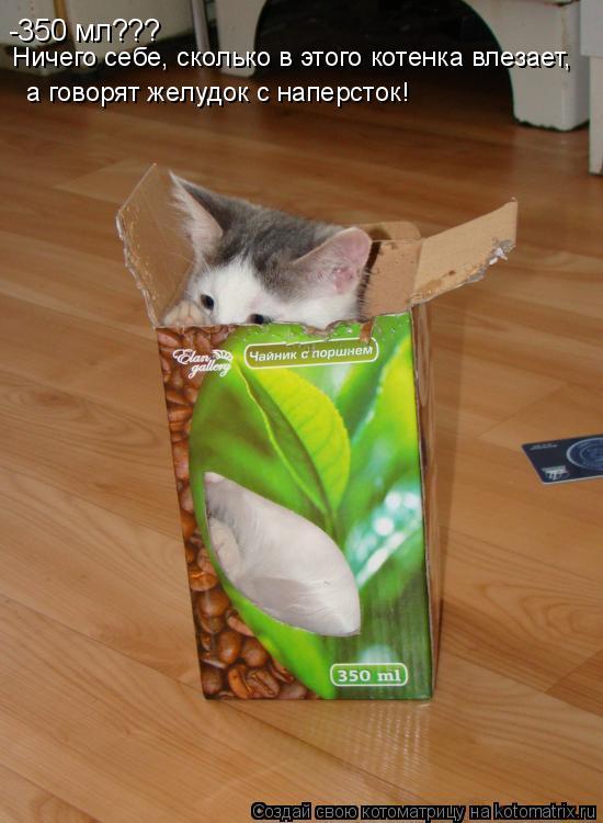 Котоматрица: -350 мл??? Ничего себе, сколько в этого котенка влезает,  а говорят желудок с наперсток!