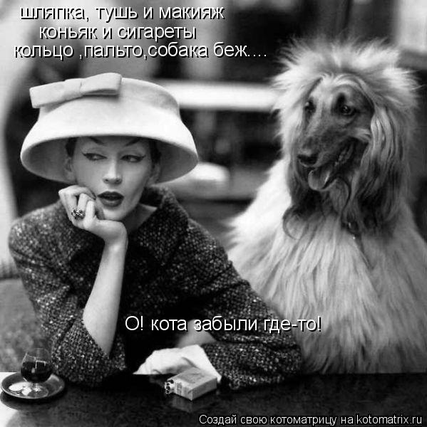 Котоматрица: шляпка, тушь и макияж коньяк и сигареты кольцо ,пальто,собака беж.... О! кота забыли где-то!