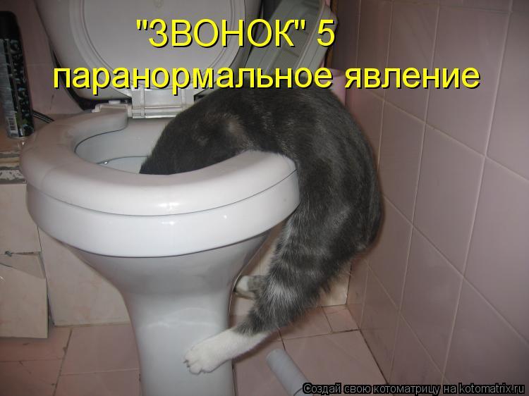 """Котоматрица: """"ЗВОНОК"""" 5 паранормальное явление"""