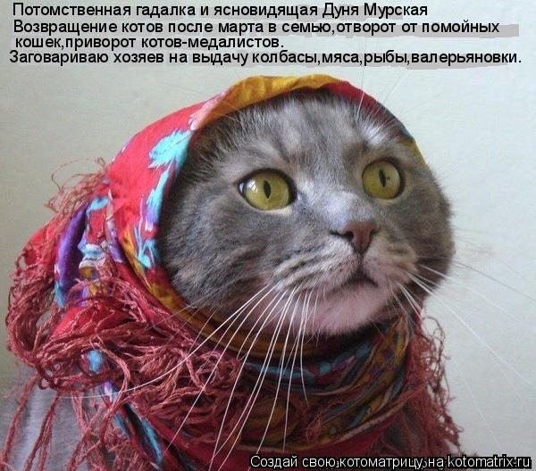 Котоматрица: Потомственная гадалка и ясновидящая Дуня Мурская Возвращение котов после марта в семью,отворот от помойных кошек,приворот котов-медалист