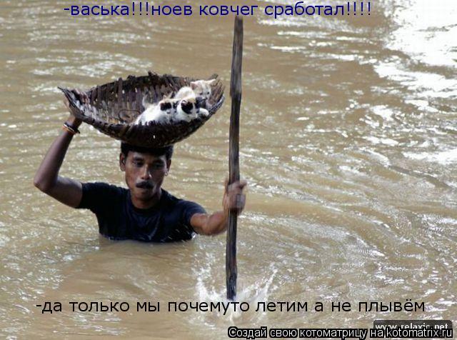 Котоматрица: -васька!!!ноев ковчег сработал!!!! -да только мы почемуто летим а не плывём