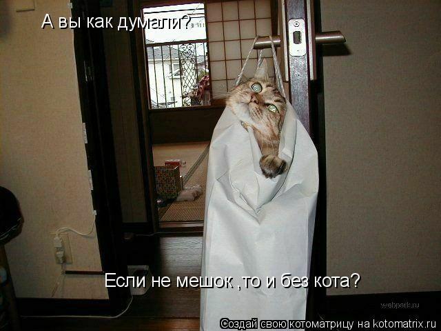 Котоматрица: А вы как думали?  Если не мешок ,то и без кота?