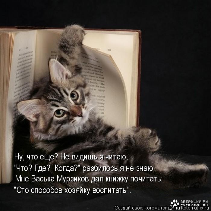 """Котоматрица: Ну, что еще? Не видишь я читаю, """"Что? Где?  Когда?"""" разбилось я не знаю,  """"Сто способов хозяйку воспитать"""". Мне Васька Мурзиков дал книжку почитат"""