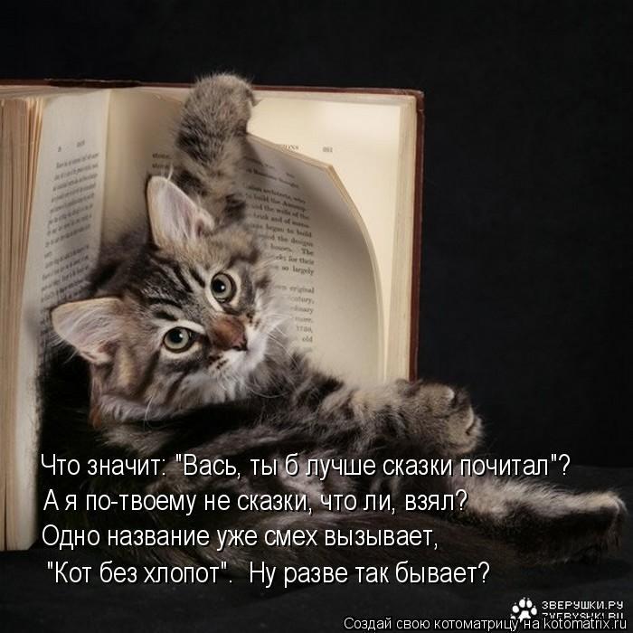 """Котоматрица: Что значит: """"Вась, ты б лучше сказки почитал""""? А я по-твоему не сказки, что ли, взял? Одно название уже смех вызывает,  """"Кот без хлопот"""".  Ну разве"""