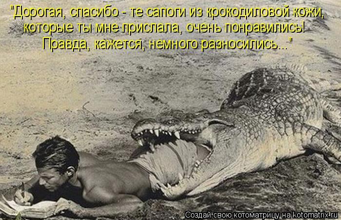сапоги под крокодиловую кожу фото