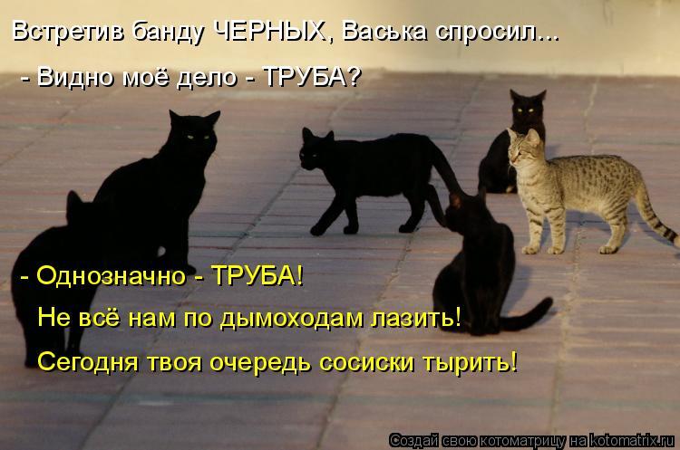 Котоматрица: Встретив банду ЧЕРНЫХ, Васька спросил... - Видно моё дело - ТРУБА? - Однозначно - ТРУБА! Не всё нам по дымоходам лазить! Сегодня твоя очередь сос