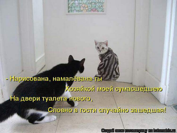 Котоматрица - - Нарисована, намалёвана ты На двери туалета нового, Хозяйкой моей сум