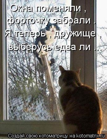 Котоматрица: Окна поменяли ,  форточку забрали . Я теперь , дружище , выберусь едва ли ...