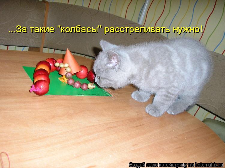 """Котоматрица: ...За такие """"колбасы"""" расстреливать нужно!"""