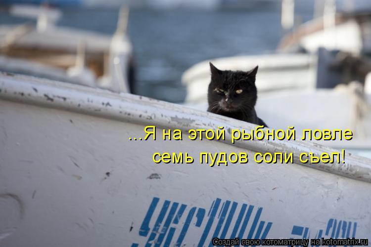 Котоматрица: ...Я на этой рыбной ловле семь пудов соли съел!
