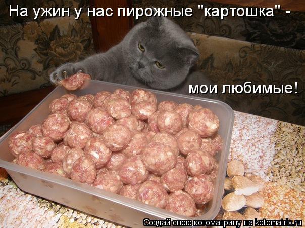 Котоматрица - На ужин у нас пирожные
