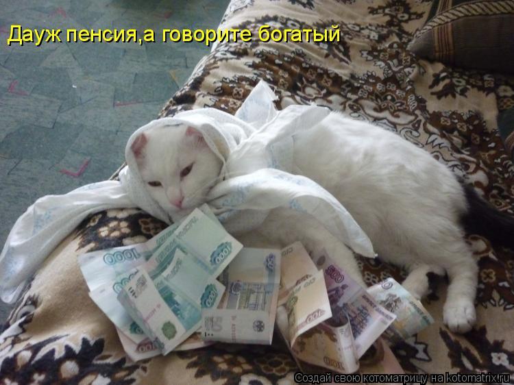 Котоматрица: Дауж пенсия,а говорите богатый