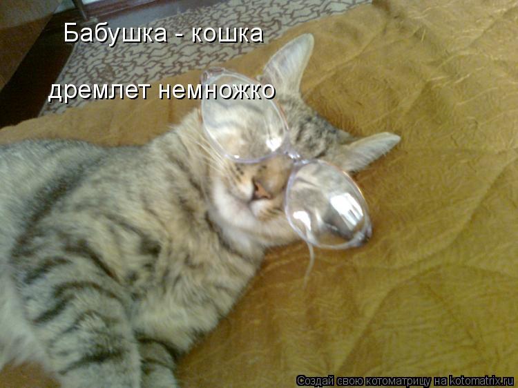 Котоматрица: Бабушка - кошка дремлет немножко