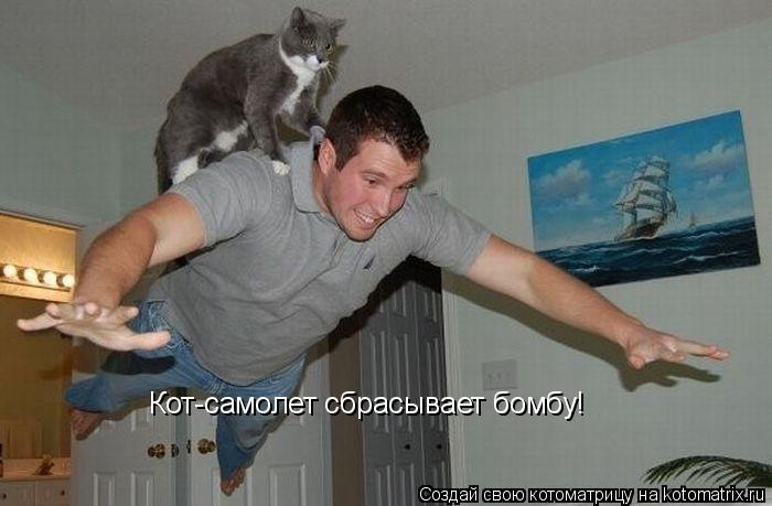 Котоматрица: Кот-самолет сбрасывает бомбу!