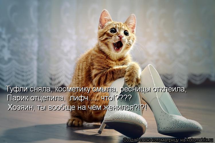 Котоматрица: Туфли сняла, косметику смыла, ресницы отклеила, Парик отцепила,  лифч..... что!???? Парик отцепила,  лифч..... что!???? Хозяин, ты вообще на чём женил