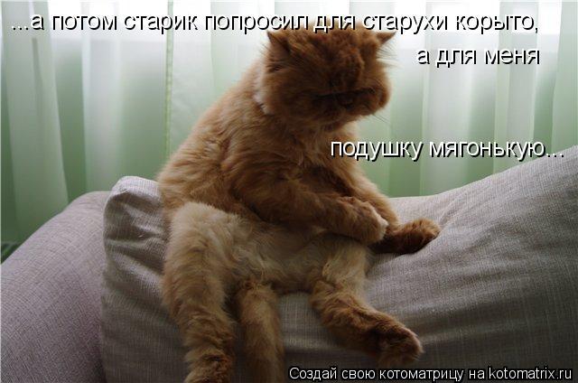 Котоматрица: ...а потом старик попросил для старухи корыто, а для меня подушку мягонькую...