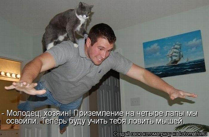 Котоматрица: - Молодец, хозяин! Приземление на четыре лапы мы освоили. Теперь буду учить тебя ловить мышей.
