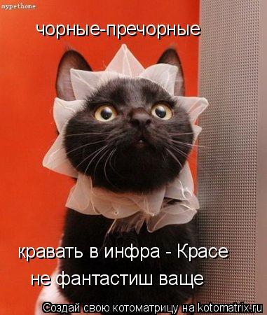 Котоматрица: чорные-пречорные кравать в инфра - Красе не фантастиш ваще