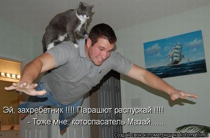 Котоматрица: Эй, захребетник !!!! Парашют распускай !!!! - Тоже мне, котоспасатель Мазай......