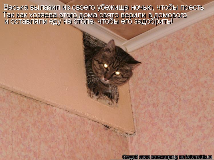 Котоматрица: Васька вылазил из своего убежища ночью, чтобы поесть Так как хозяева этого дома свято верили в домового и оставляли еду на столе, чтобы его