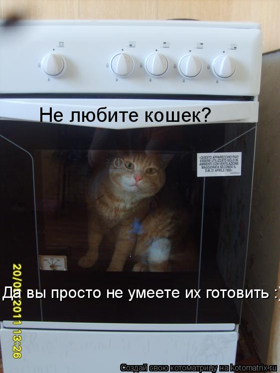 Котоматрица: Не любите кошек?  Да вы просто не умеете их готовить :)