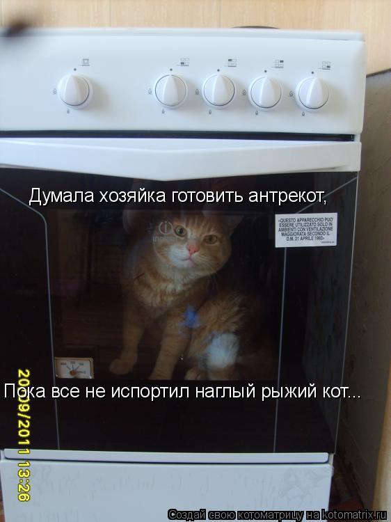 Котоматрица: Думала хозяйка готовить антрекот, Пока все не испортил наглый рыжий кот...