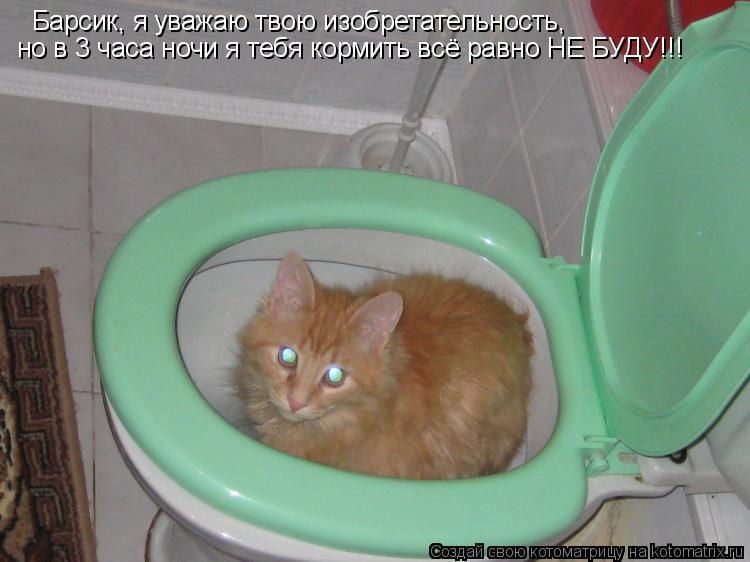 Котоматрица: Барсик, я уважаю твою изобретательность, но в 3 часа ночи я тебя кормить всё равно НЕ БУДУ!!!
