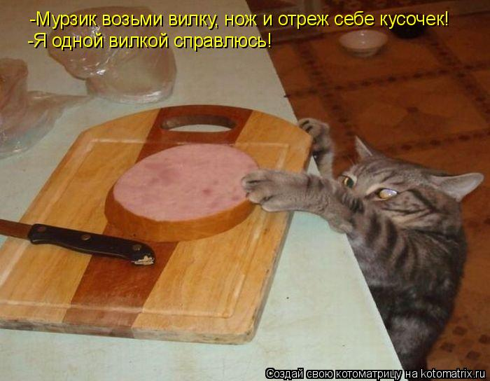 Котоматрица: -Мурзик возьми вилку, нож и отреж себе кусочек! -Я одной вилкой справлюсь!