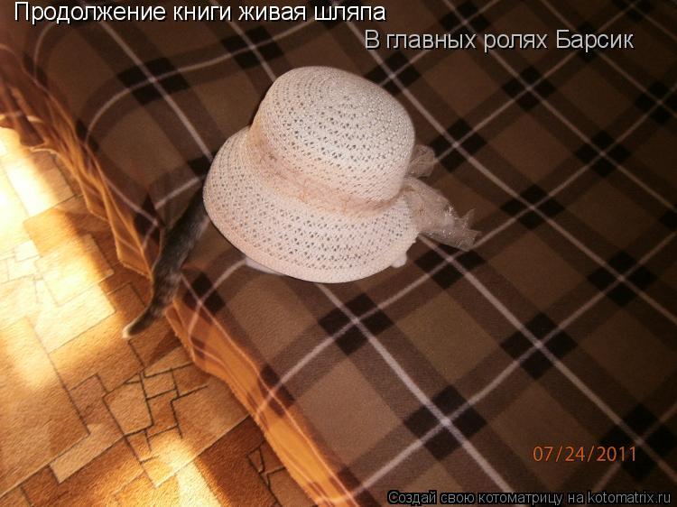 Котоматрица: Продолжение книги живая шляпа В главных ролях Барсик