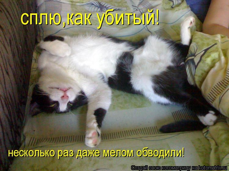 Котоматрица: сплю,как убитый! несколько раз даже мелом обводили!