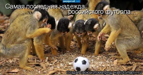 Котоматрица: Самая последняя надежда российского футбола...