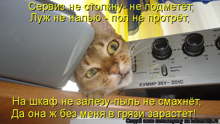 Котоматрица - Сервиз не столкну- не подметёт, Луж не налью - пол не протрёт, На шкаф