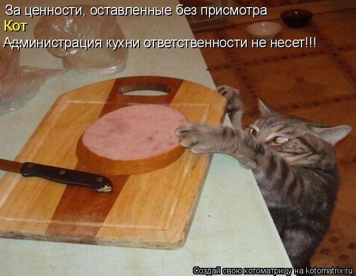 Котоматрица: За ценности, оставленные без присмотра Администрация кухни ответственности не несет!!! Кот ---