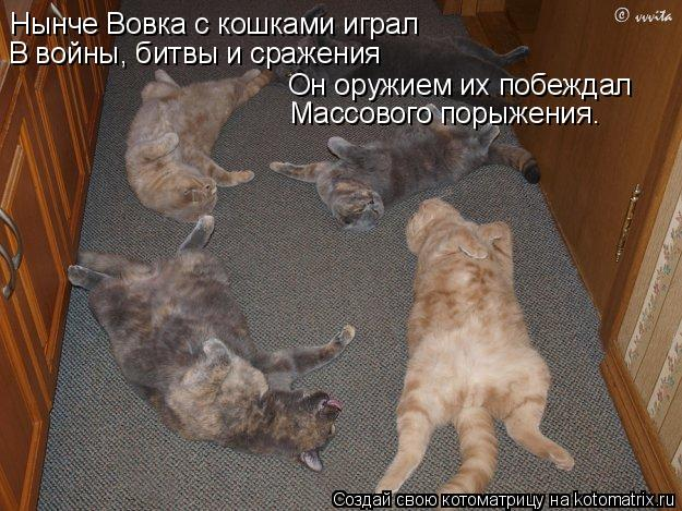 Котоматрица: Нынче Вовка с кошками играл В войны, битвы и сражения Он оружием их побеждал Массового порыжения.