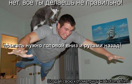 Котоматрица: нет, все ты делаешь не правильно! прыгать нужно головой вниз и руками назад!
