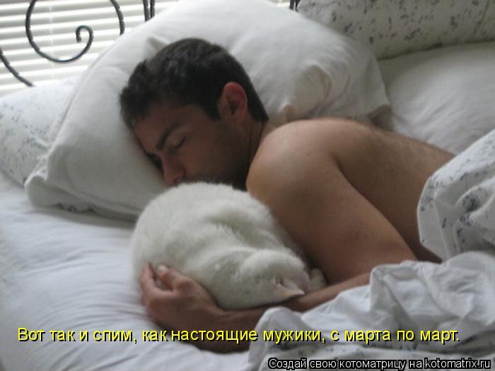 Котоматрица: Вот так и спим, как настоящие мужики, с марта по март.