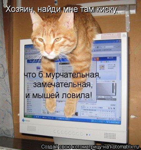 Котоматрица: Хозяин, найди мне там киску, что б мурчательная, замечательная, и мышей ловила!