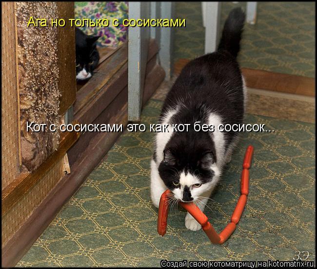 Котоматрица: Кот с сосисками это как кот без сосисок... Ага но только с сосисками