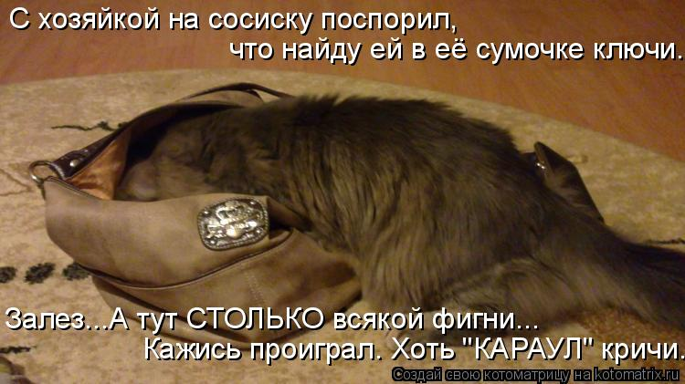 Котоматрица - С хозяйкой на сосиску поспорил, что найду ей в её сумочке ключи. Залез