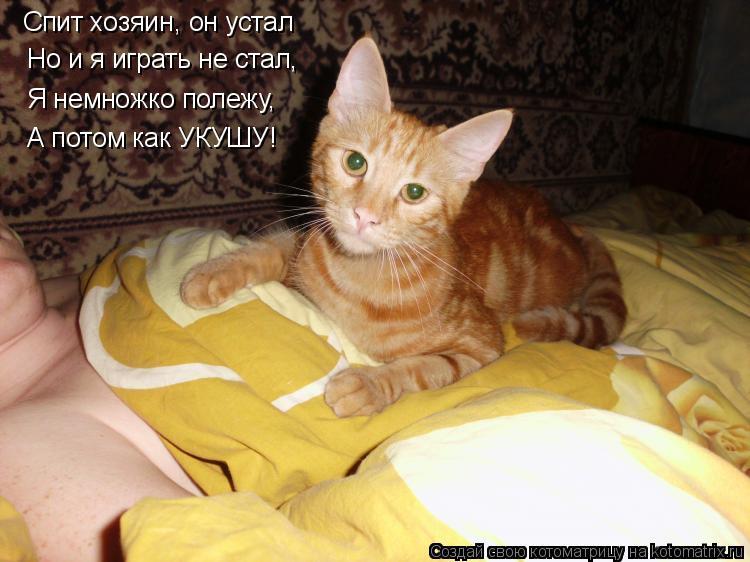 Котоматрица: Спит хозяин, он устал Но и я играть не стал, Я немножко полежу, А потом как УКУШУ!