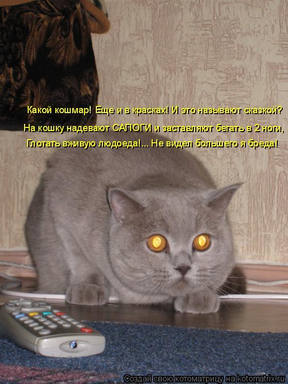 Котоматрица - Какой кошмар! Еще и в красках! И это называют сказкой? На кошку надева